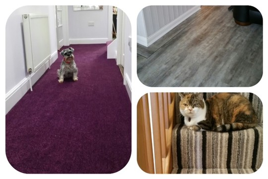 Floorcoverings Essex Ltd - Image 4